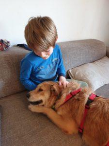 Bella (Isobel), geb ca. 2013/2014, auf einem Auge blind,  verträglich mit Katzen