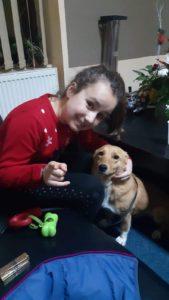 Furnica - ca 2 Jahre jung, kastriert, kleinbleibend, lieb , kennt das Leben im Haus